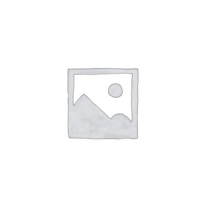 Fossil  Brillendose aus Blech